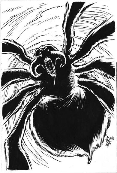 spider inktober.jpg