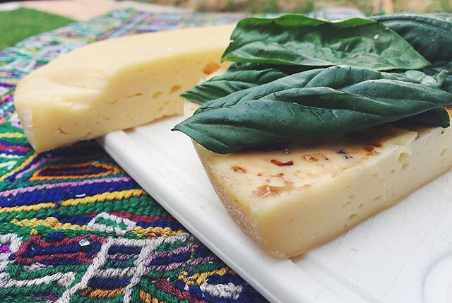 🧀 Literally-Grilled-Cheese 🧀 Something for your 4th of July fun! Got ~1lb of this artisan cheese (called Chiquián) from the local market for $2.50 then I cut it in half, stuffed it with basil, drizzled it with balsamic, and *grilled* it - SO TASTY. Top it with some raw honey and you won't be able to stop eating 🍯 Try this with any firm or semi-firm block of cheese (provolone, halloumi, etc)...then HOLLA. Happy 4th!! #thehealthycamper