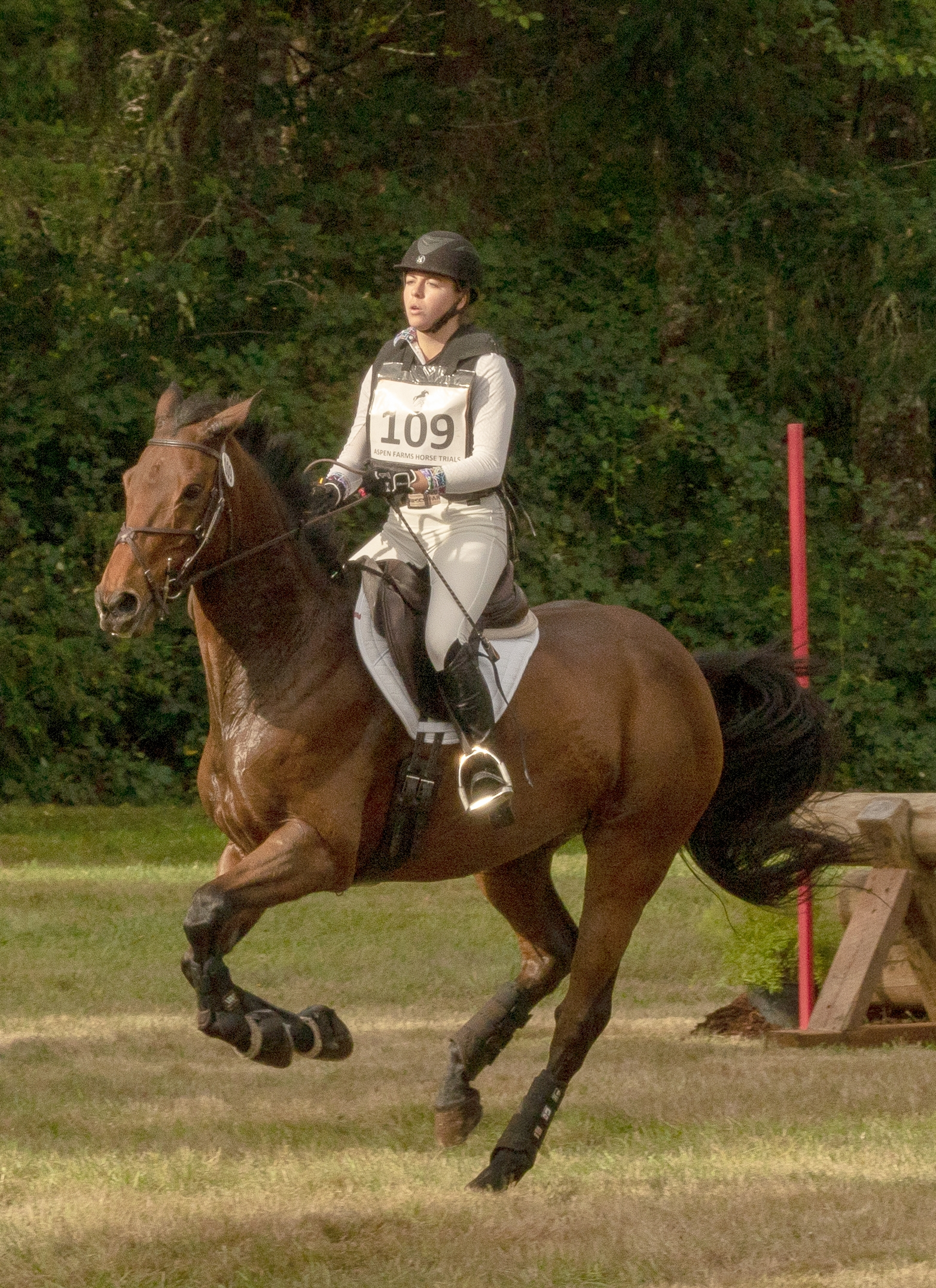 Cross Country. The object of this test is to prove the speed, endurance, and jumping ability of the horse over varied terrain and obstacles.