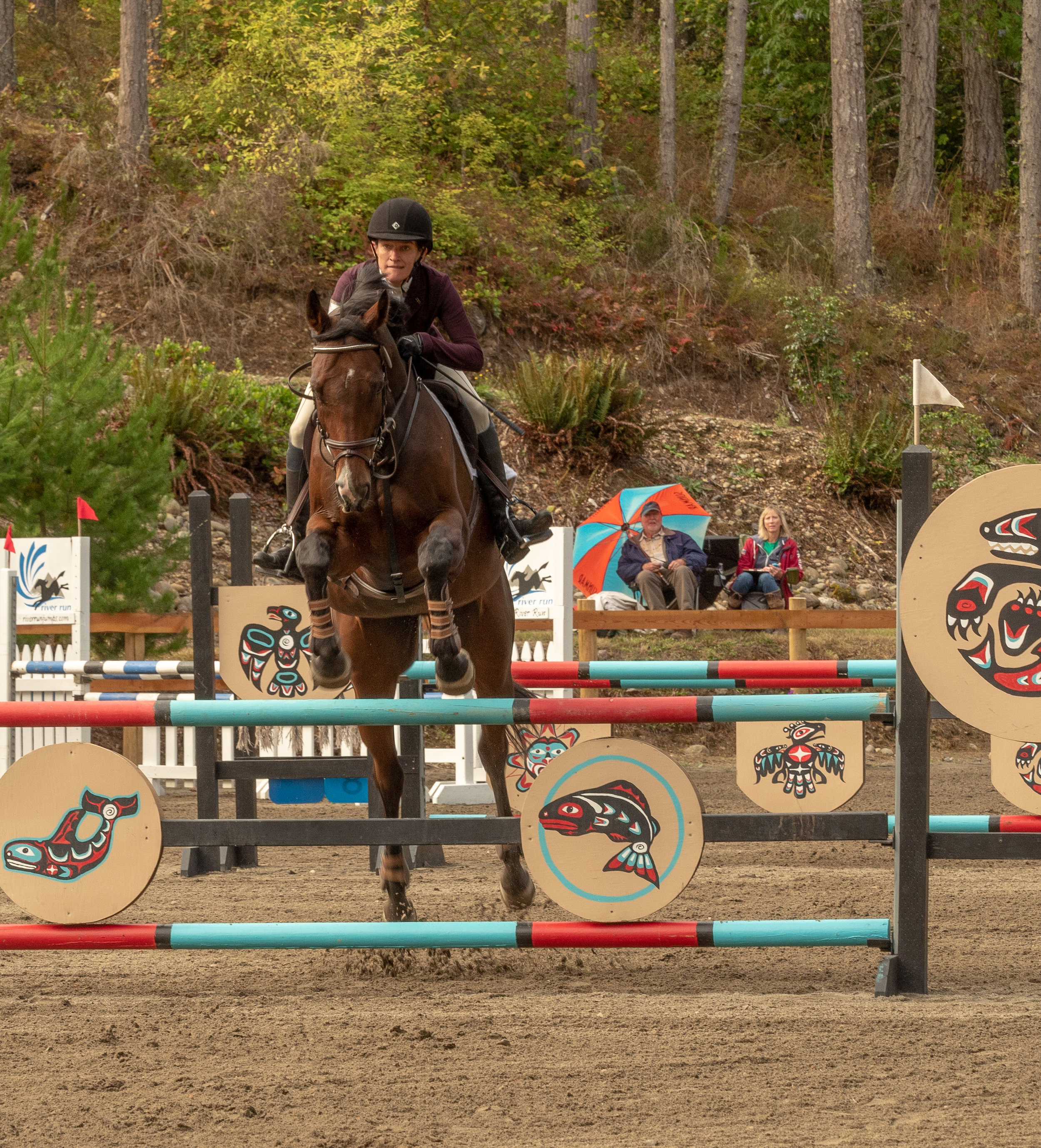 Show Jumping in the arena. A show jumping course comprises a series of colored fences usually made up of lightweight rails that are easily knocked down.