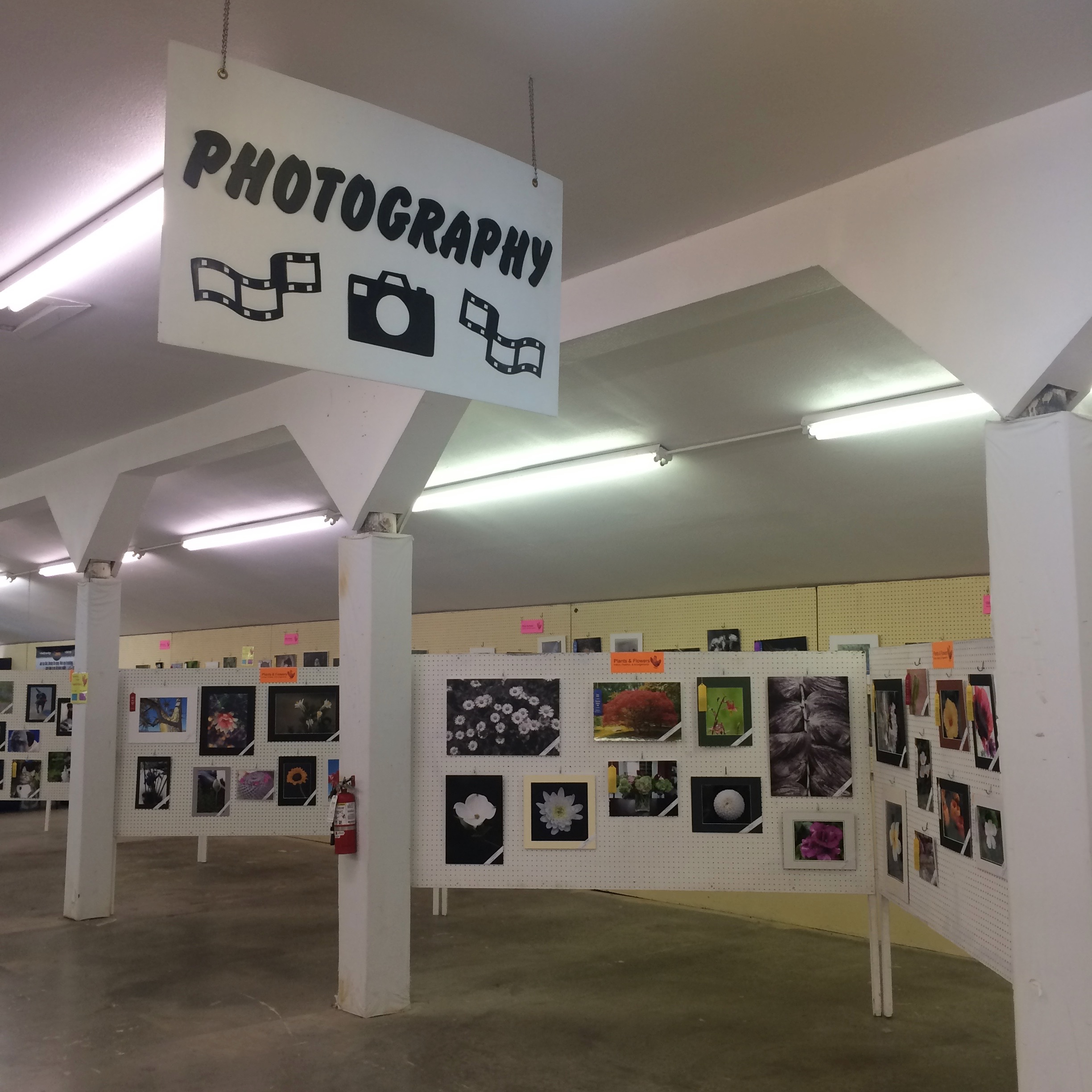 The photography room at the Thurston County Fair, 2018.
