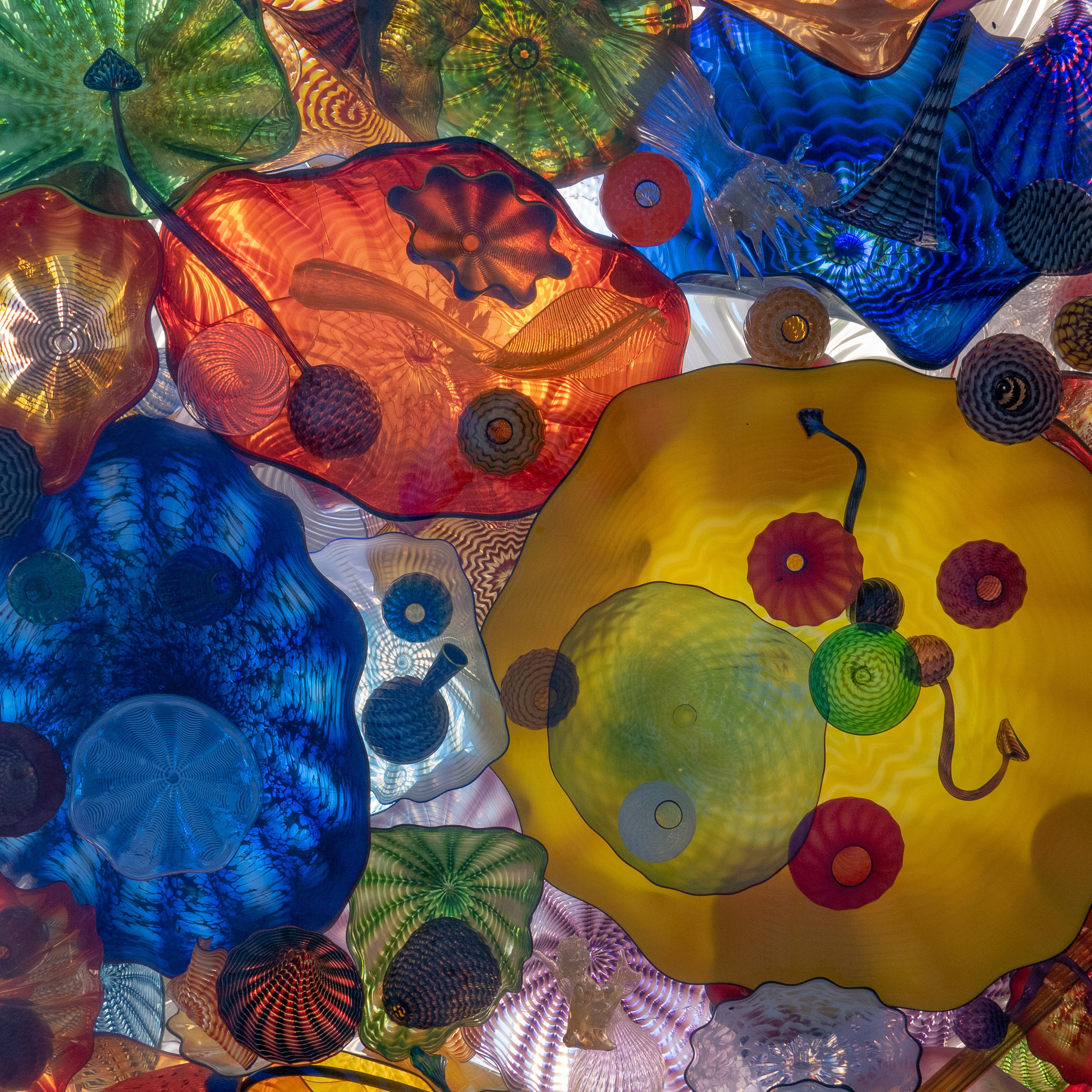 "Excerpt from the ""Chihuly Bridge of Glass, Seaform Pavilion."""