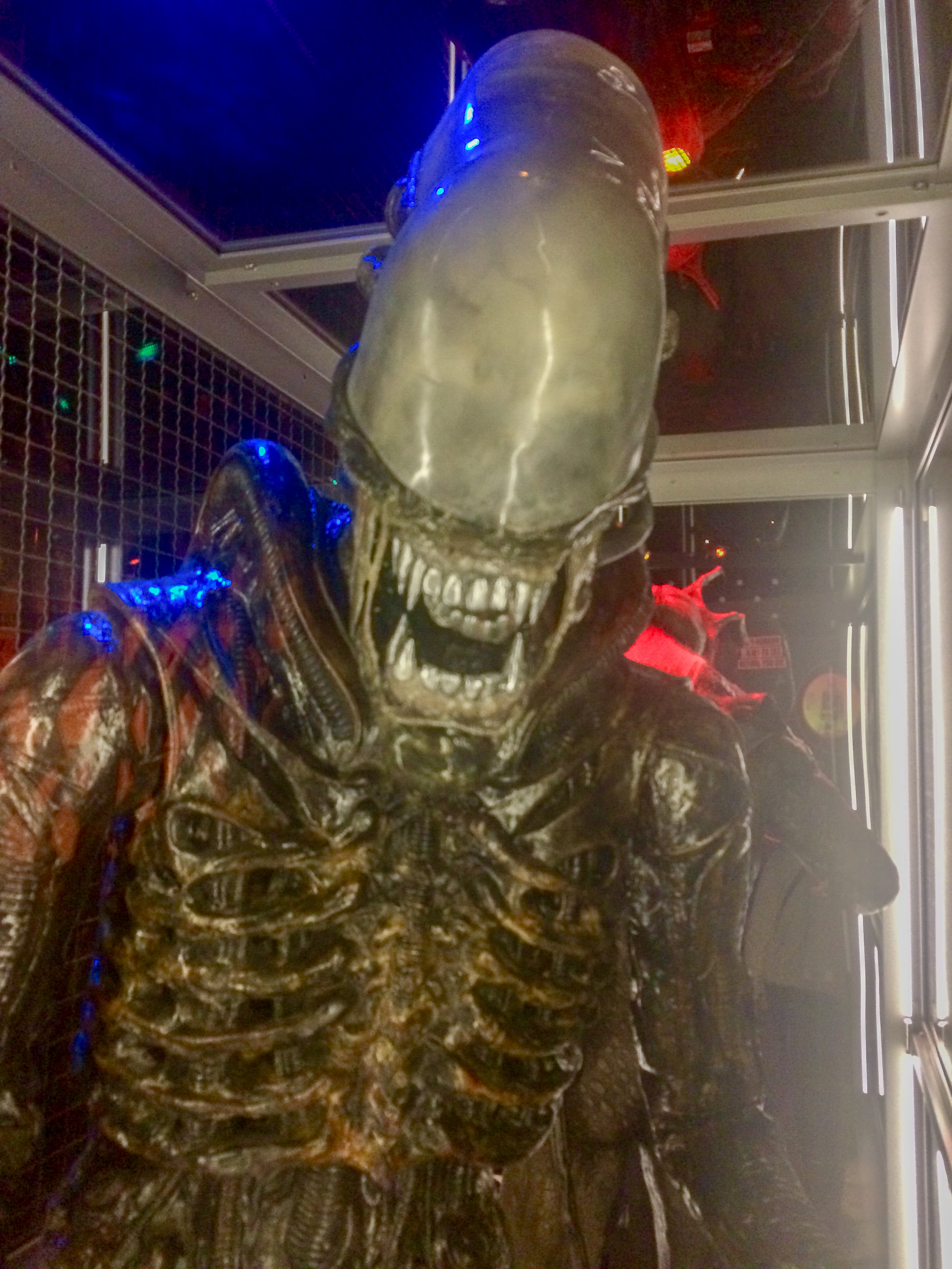 """This is my 'Be Fearless' photo. """"Alien"""" from the Museum of Popular Culture in Seattle."""