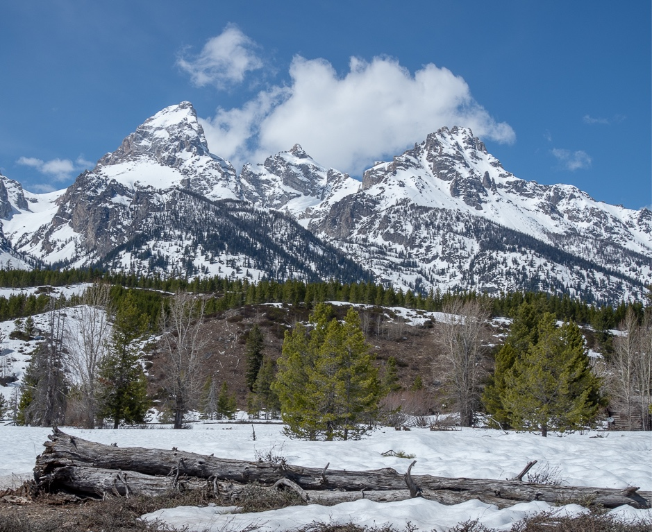 "Grand Teton National Park landscape photography: ""Always look for the foreground, middle-ground and background."""