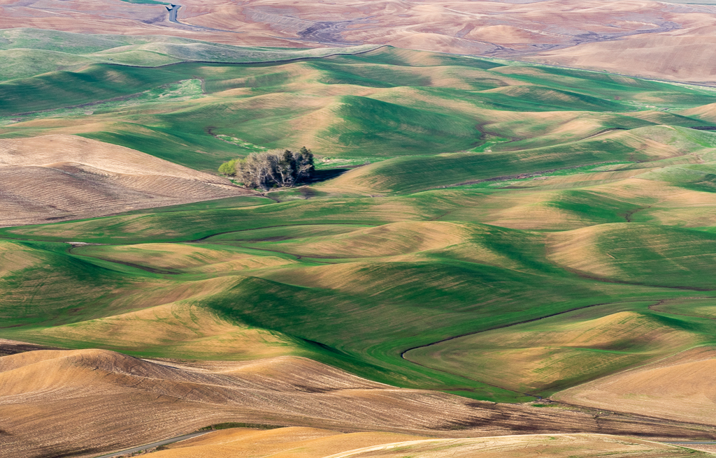 Through the Palouse and on to Grand Teton National Park.
