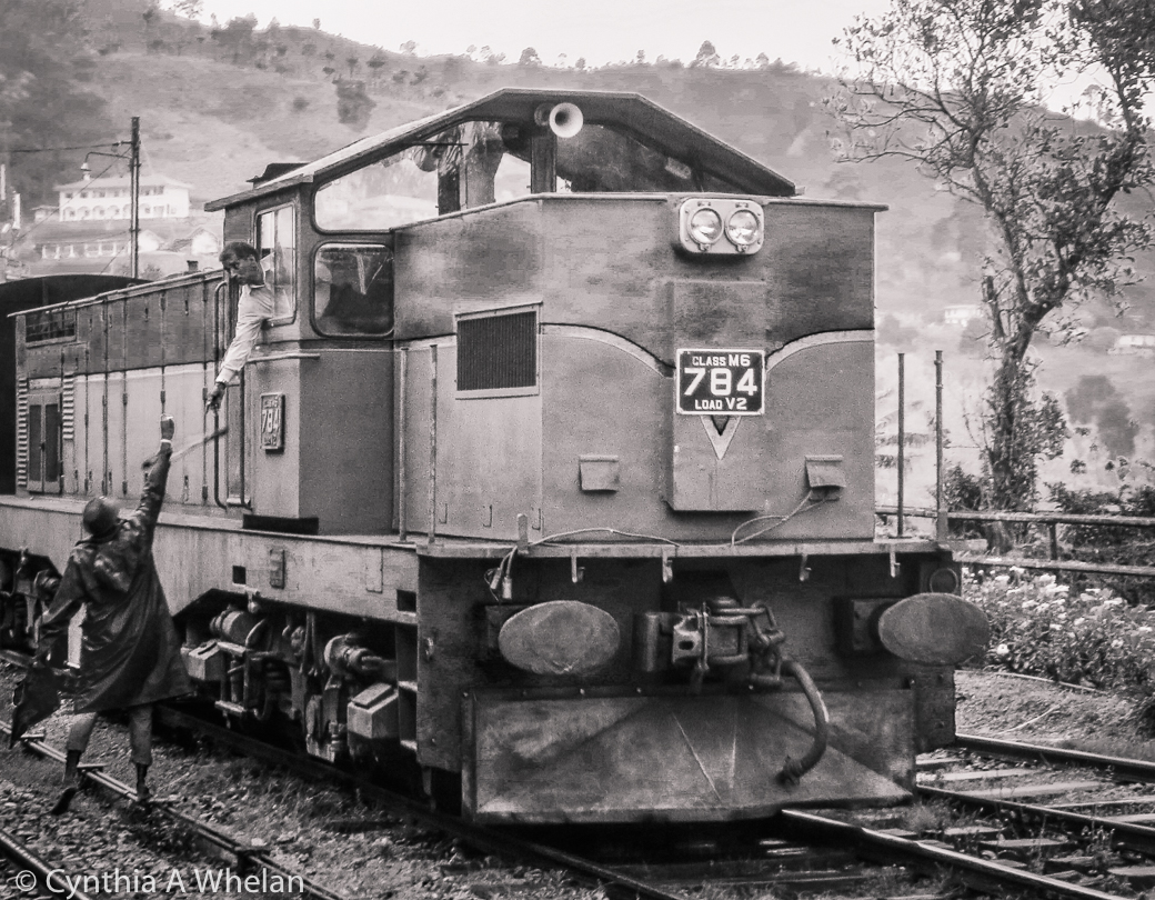 Sri Lanka Railway 2019_Cynthia A Whelan.jpg