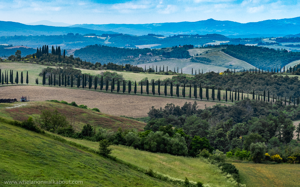 The Tuscany landscape, from my previous travels to Italy.