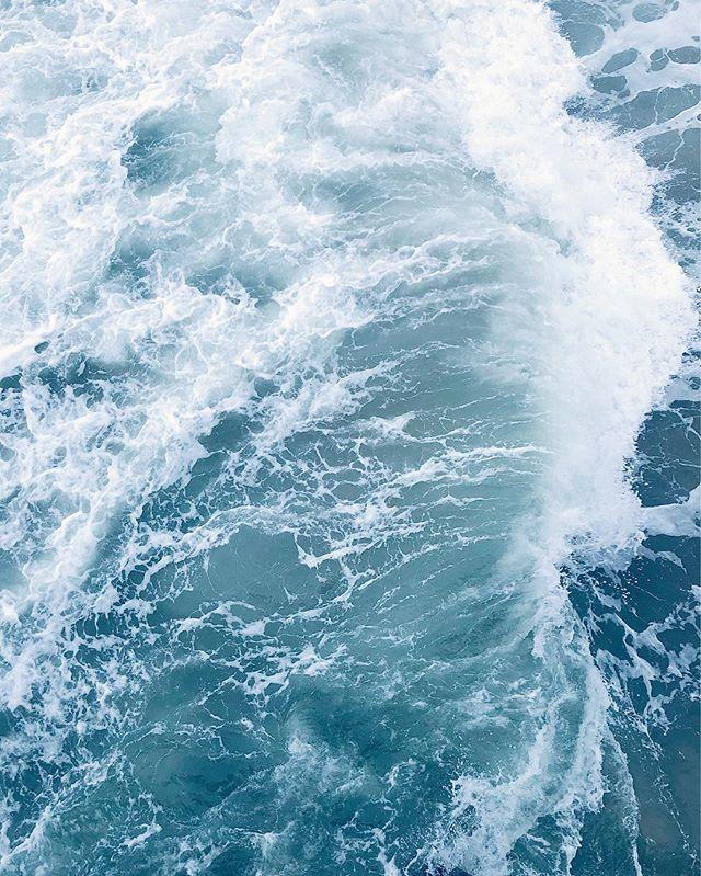 curl of the back #wave #ocean #crashing #vsco