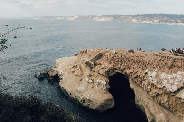 pelicans' paradise #westcoast #ocean #cave #vsco