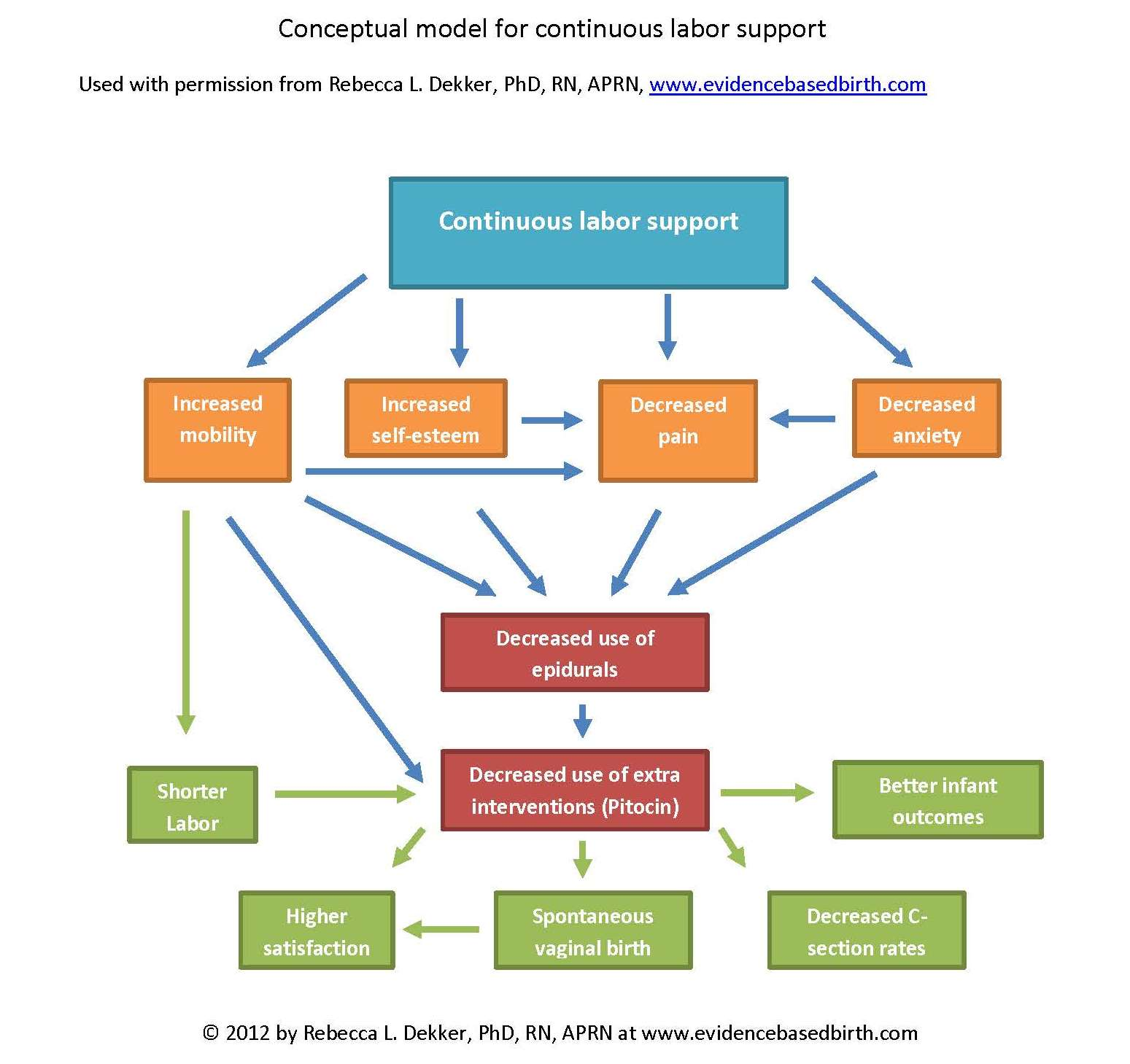 Conceptual Model for Continuous Labor Support from EvidenceBasedBirth.com