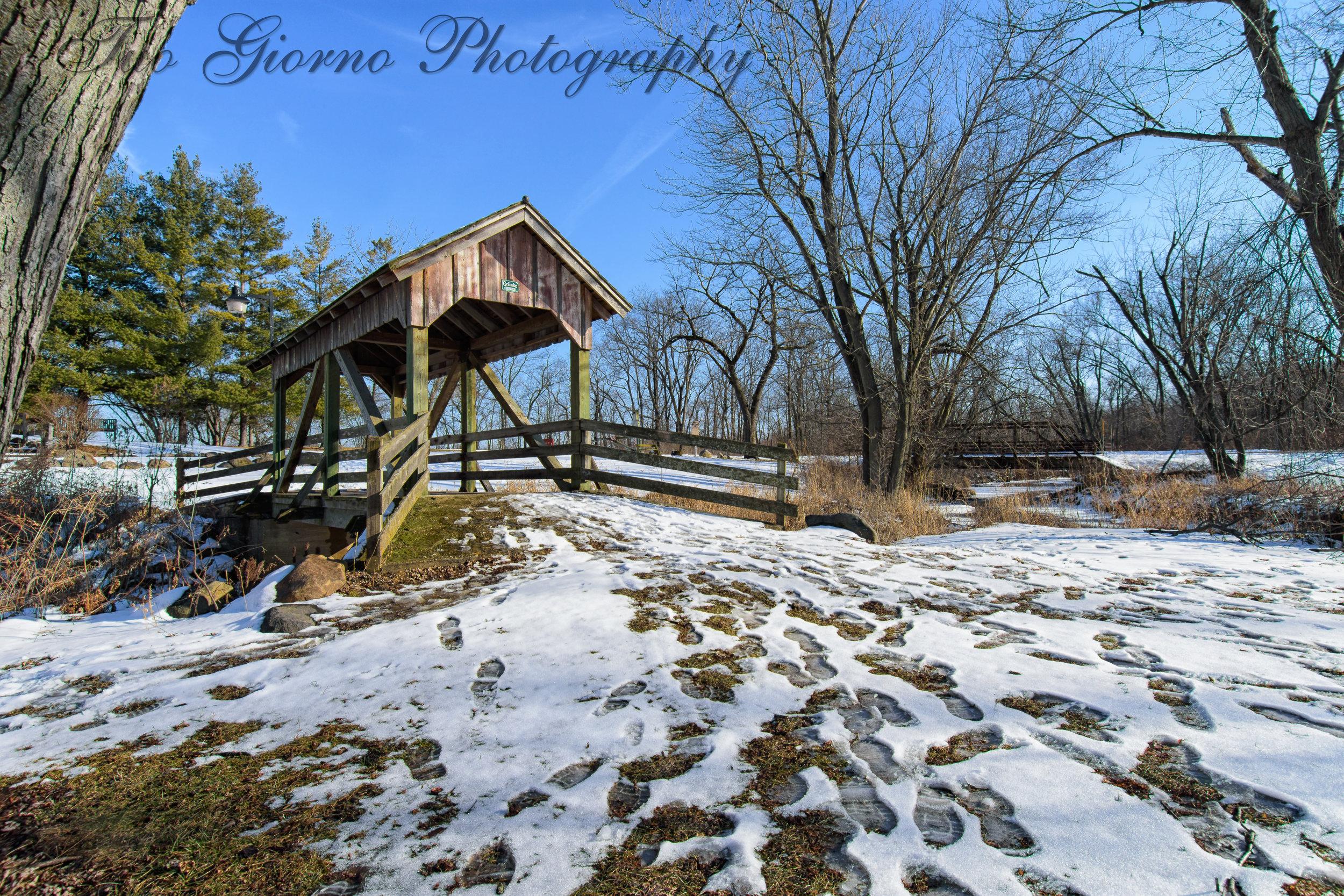 Ground-View-Bridge-_DSC3051 water.jpg