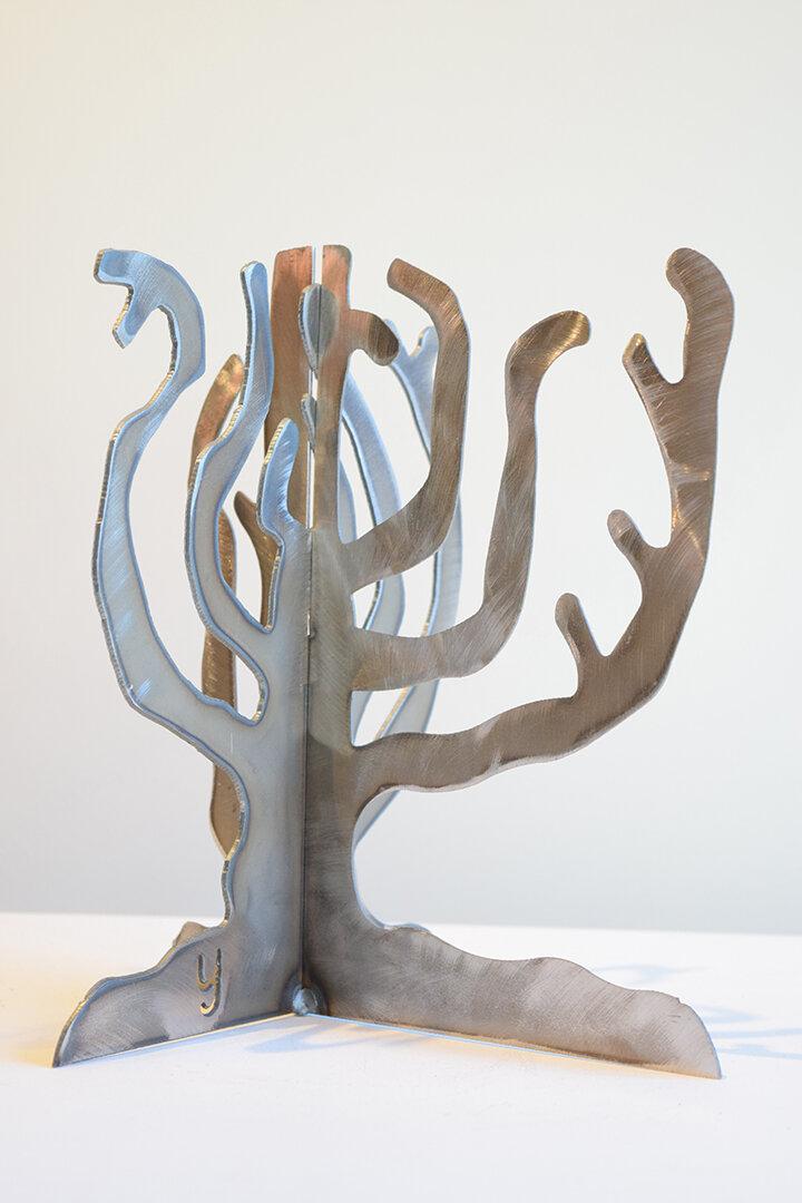My Secret Tree.JPG