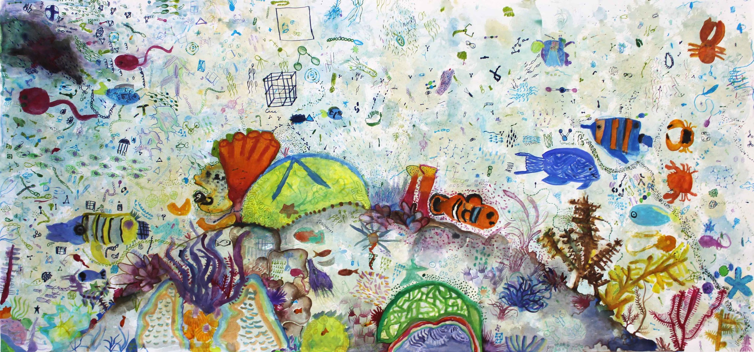 coral bommie 2.jpg
