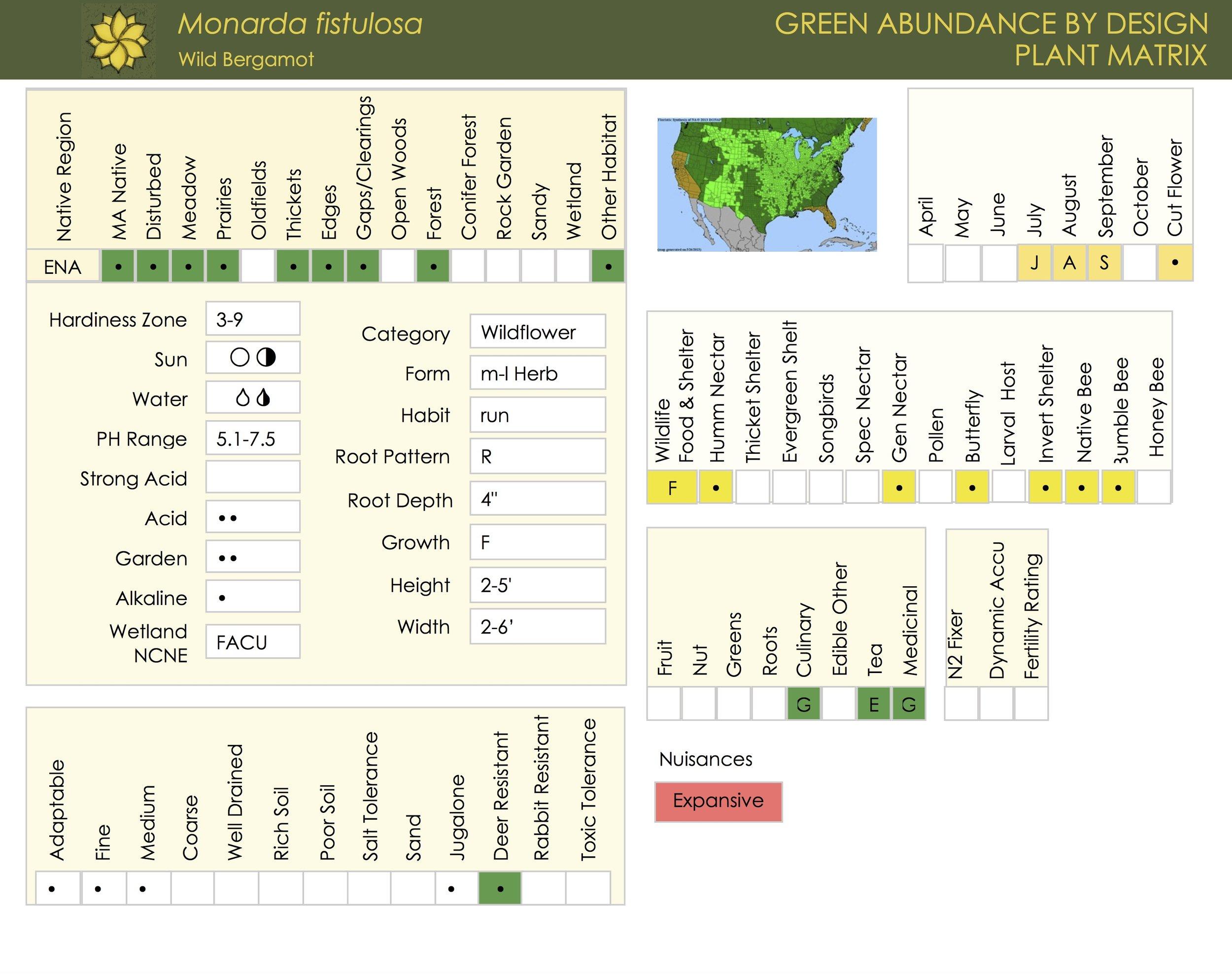 Monarda Fistulosa Plant Matrix Card.jpg