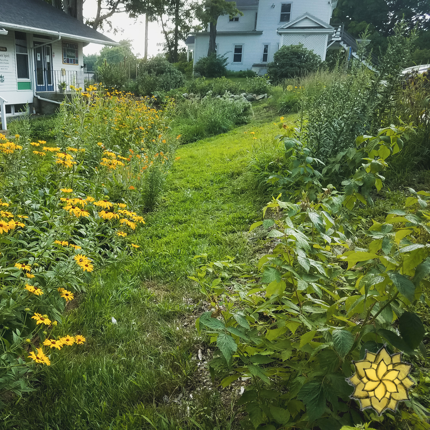 Reformation - This is a garden seeking to deepen the functions of under utilized landscapes.A whole lot of love, community, and care has gone into making this garden a reality.If you are interested in learning more of this garden's creation, there are a host of videos below.