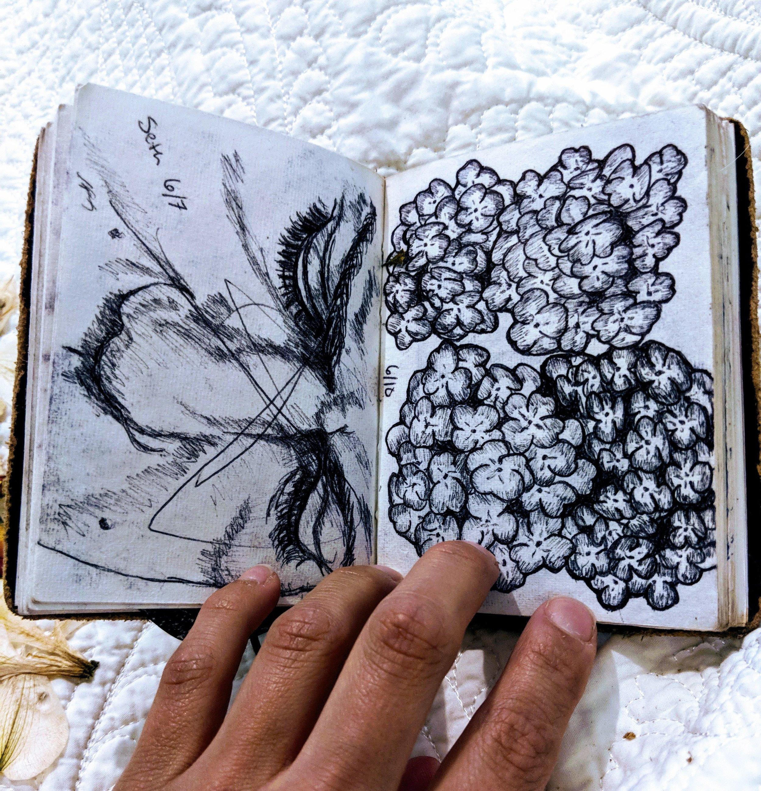 Sketchbook15.jpg
