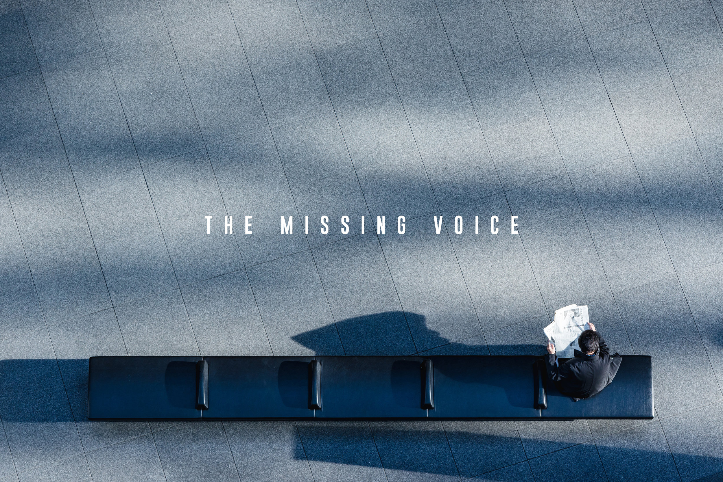 TheMissing-Voice.jpg