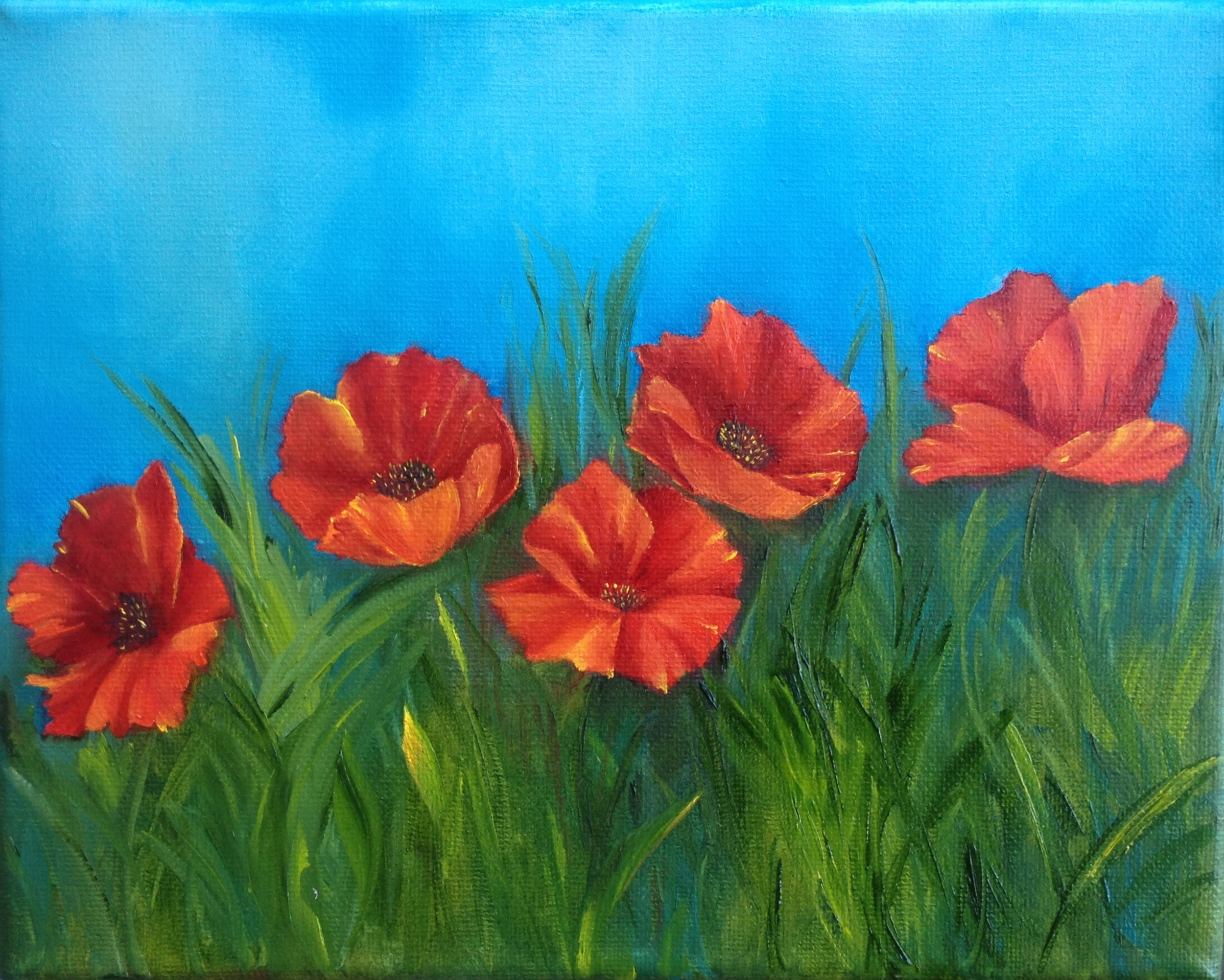 Crimson Poppies Row by Row