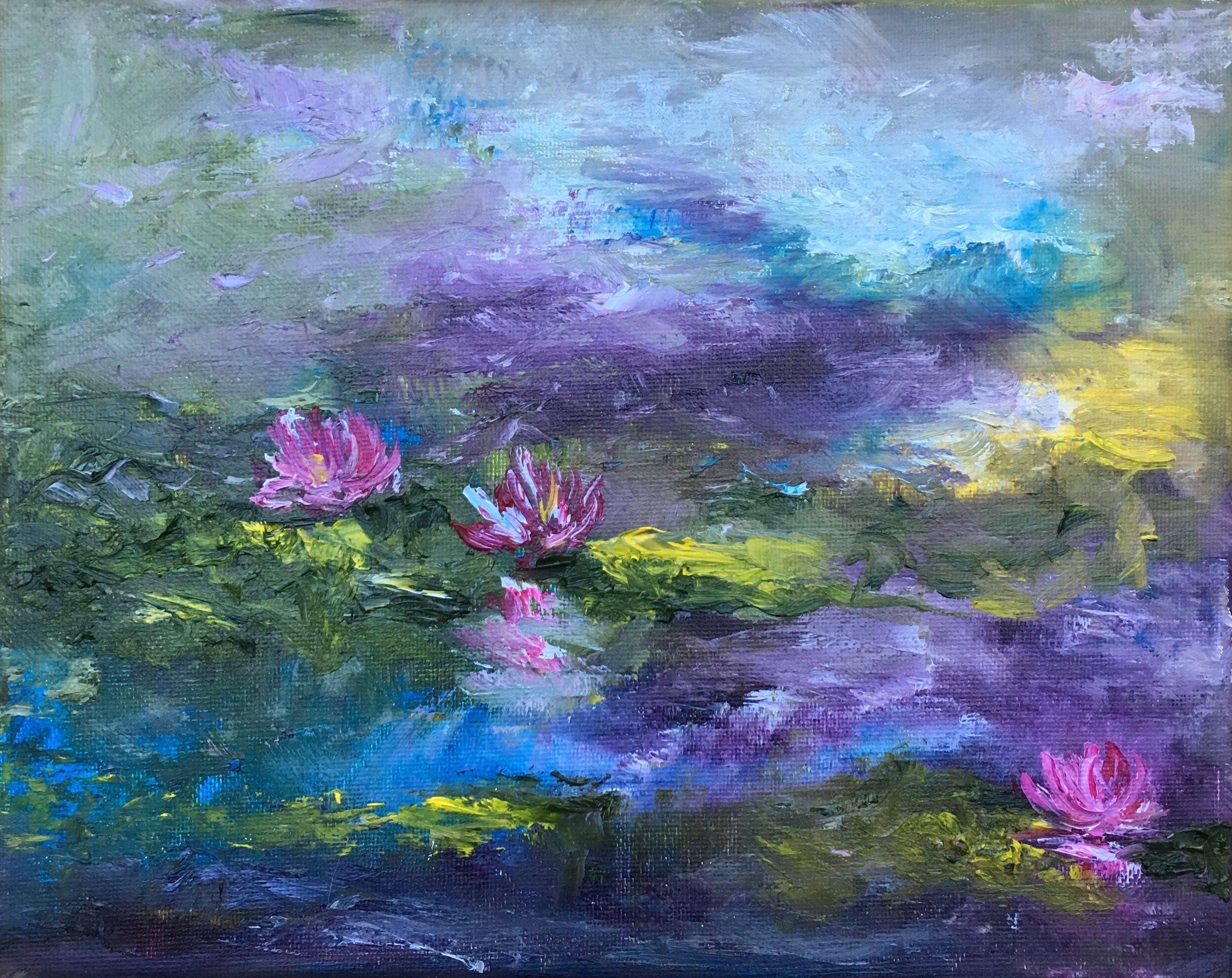 Waterlilies in the Evening Light