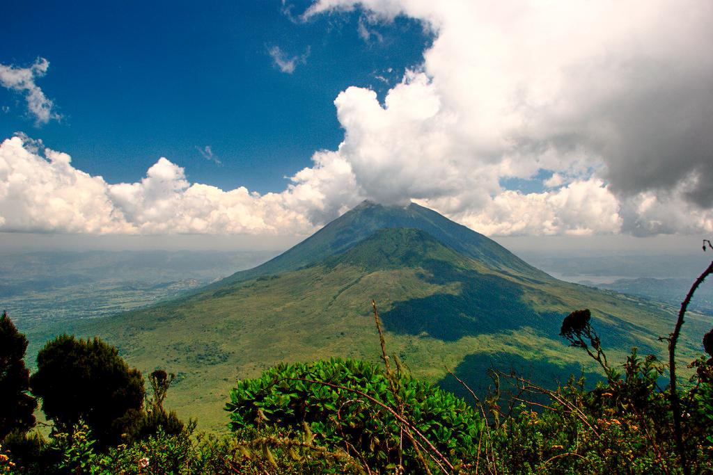 Mgahinga Gorilla National Park    Der Mgahinga Gorilla National Park liegt tief in den Wolken auf einer Höhe zwischen 2,227m and 4,127m. Wie der Name schon verrät wurde der Nationalpark erschaffen, um die ansässigen Berggorillas zu schützen. Außerdem ist der Wald die Heimat der gefährdeten Goldmeerkatze.  Mgahinga's größter Erkennungswert sind die drei Vulkankegel, teil des spektakulären Virunga Gebirges, welches in der Grenzregion vom Kongo, Ruanda und Uganda liegt. Touren nach Mgahinga werden individuell für dich erstellt.