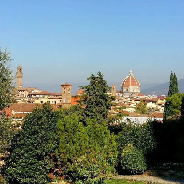City & nature juxtaposed | It's not always easy to get a photo of Florence's skyline without cranes popping up among the bell towers, but this vantage point in the Rose Garden provided strategic masking (unfortunately Giotto's graceful bell tower is also hidden). I love how beautifully Florence's terracotta rooftops fit in so beautifully with the palette of the surrounding countryside. ▪ #firenze #seaofterracotta #rooftops #cupola #brunelleschi #architecture #nature #naturespalette #florence #skyline #igflorence #rosegarden #view