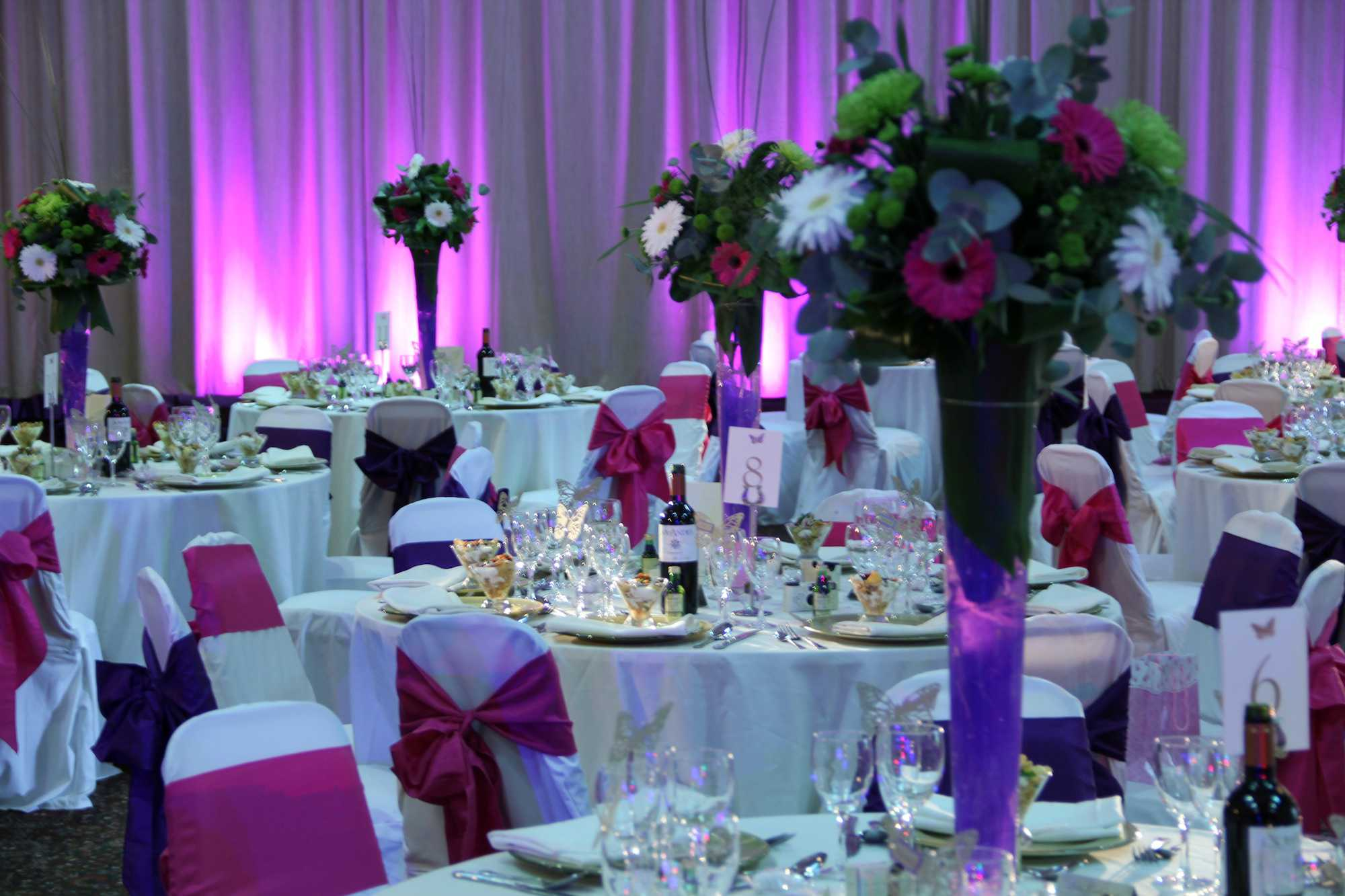 Wedding Lighting Hire at Tatton Park in Cheshire. White Drape, Pink Uplighters and Table Pinspots.