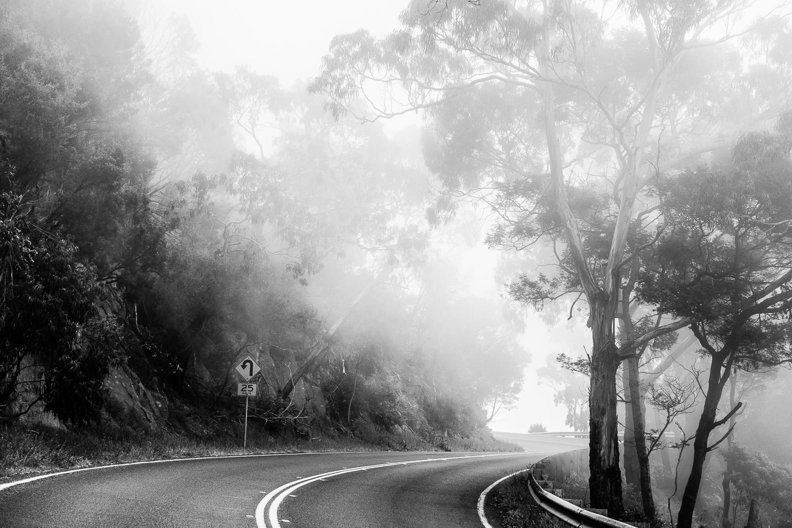 MAAPRITTE_Melbourne_Curtes_8564.jpg
