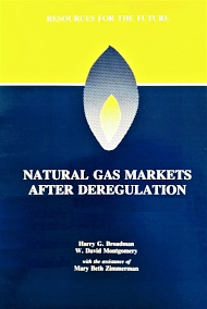 Natural Gas Markets After Dereg.jpg