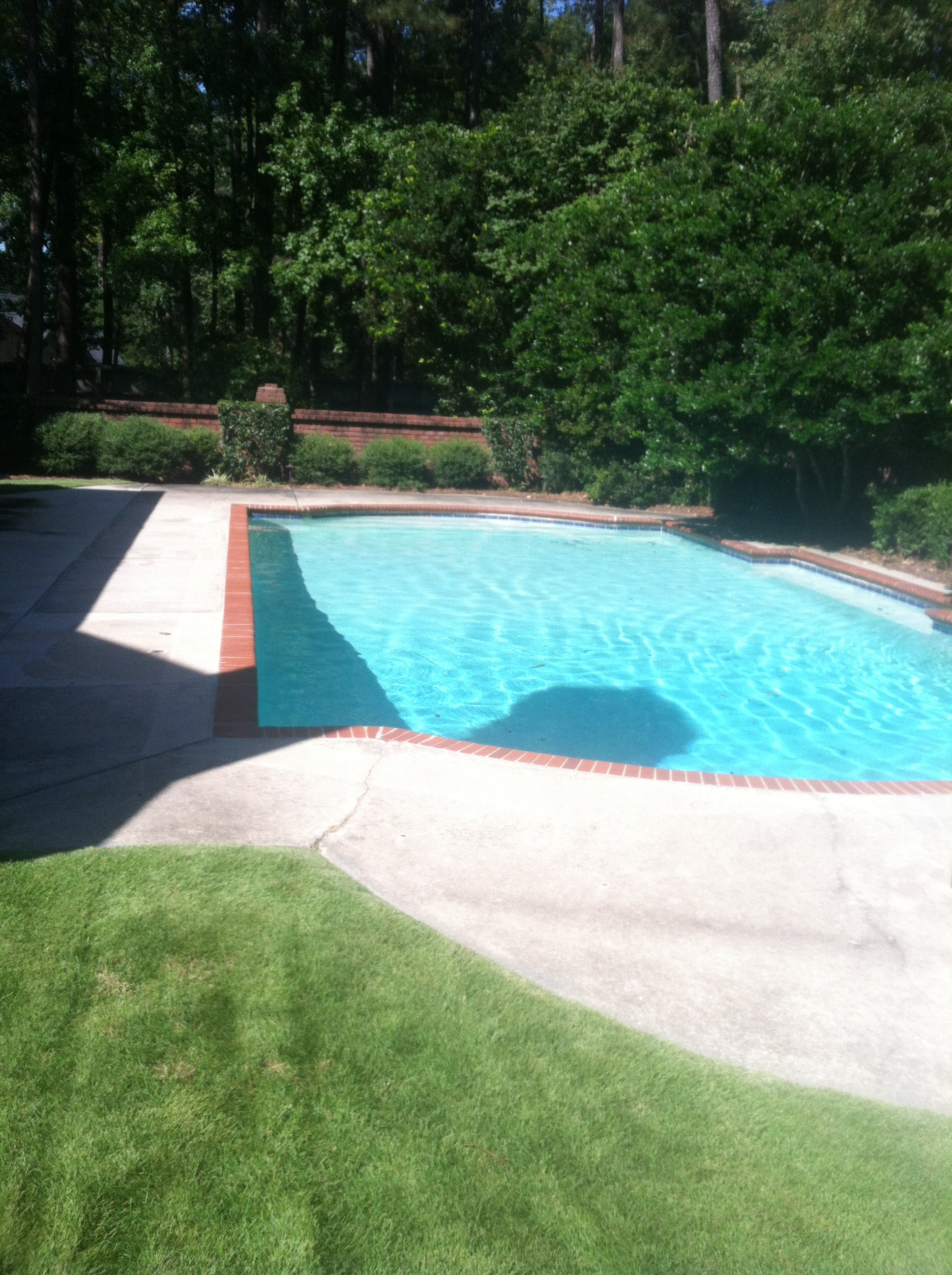 Elite Pool Maintenance, Drain and Clean Pool Service, gunite after