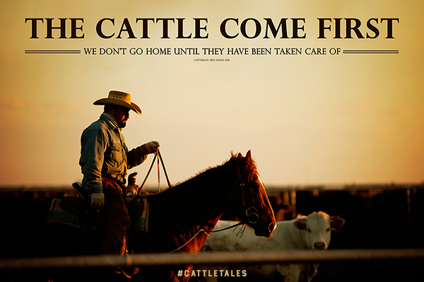 Cattle Come First by Erin Ehnle