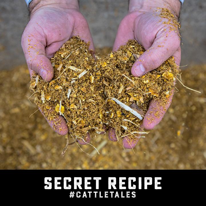 Square 7-Secret Recipe.png