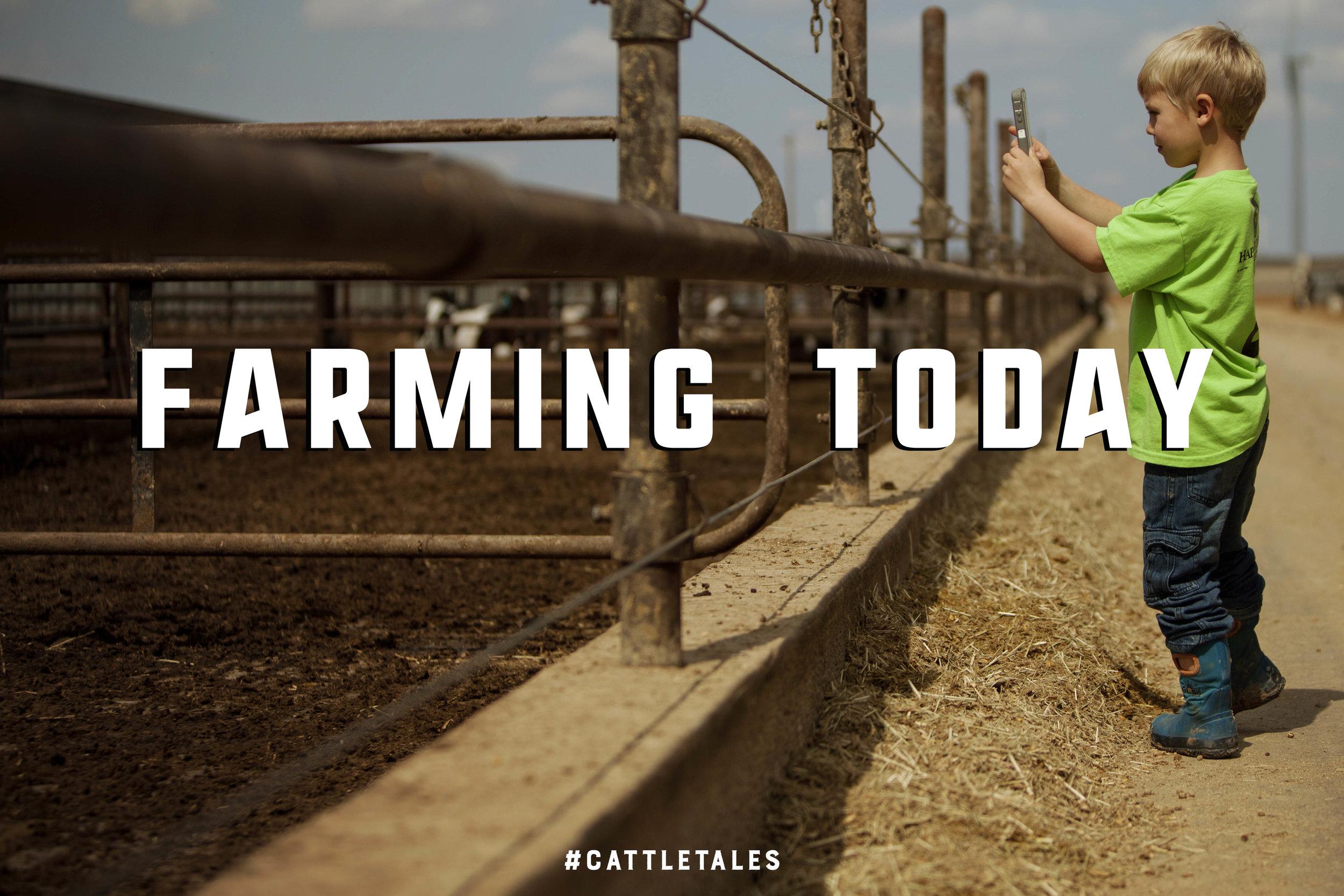 Farming Today.jpg