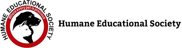 hes-logo-2.png