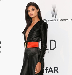 2015 GALA AMFAR FRANCE   (CLICK TO VIEW GALLERY)