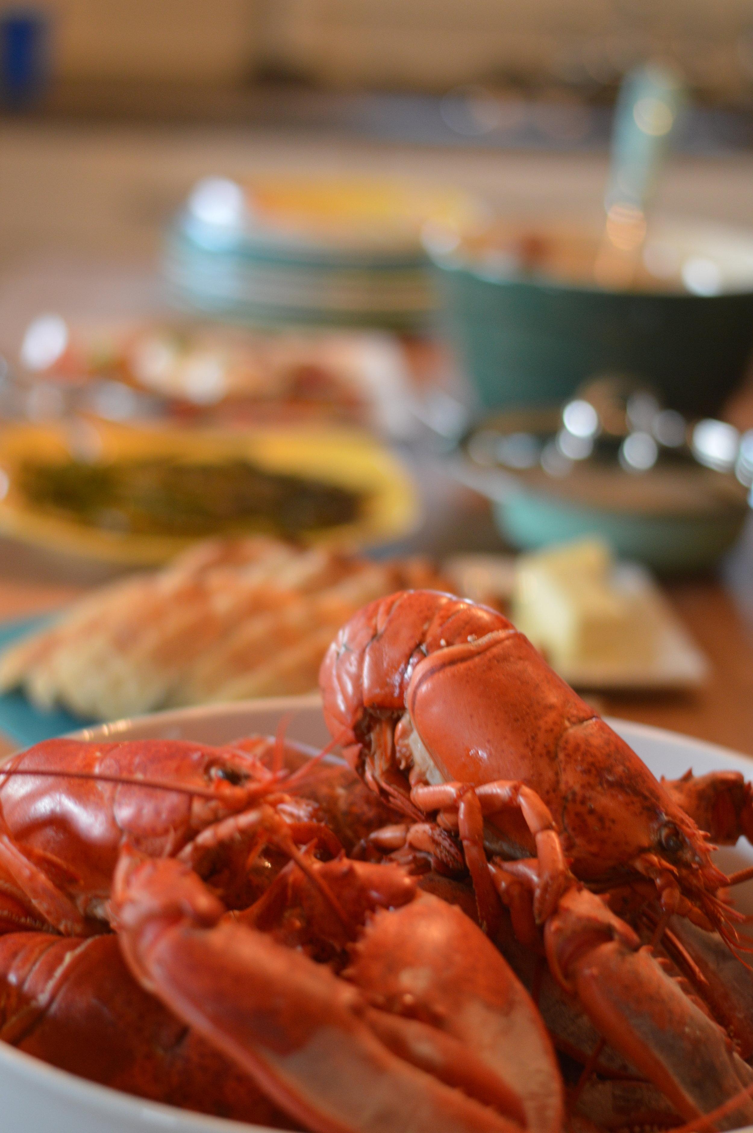 best lobster dinner