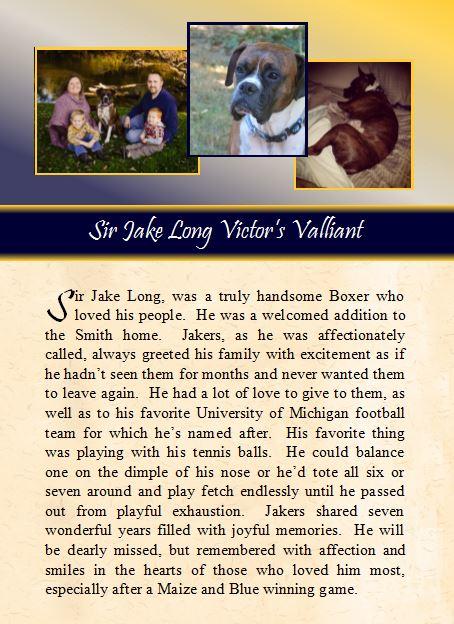 2016-04-27 Sir Jake Long.JPG