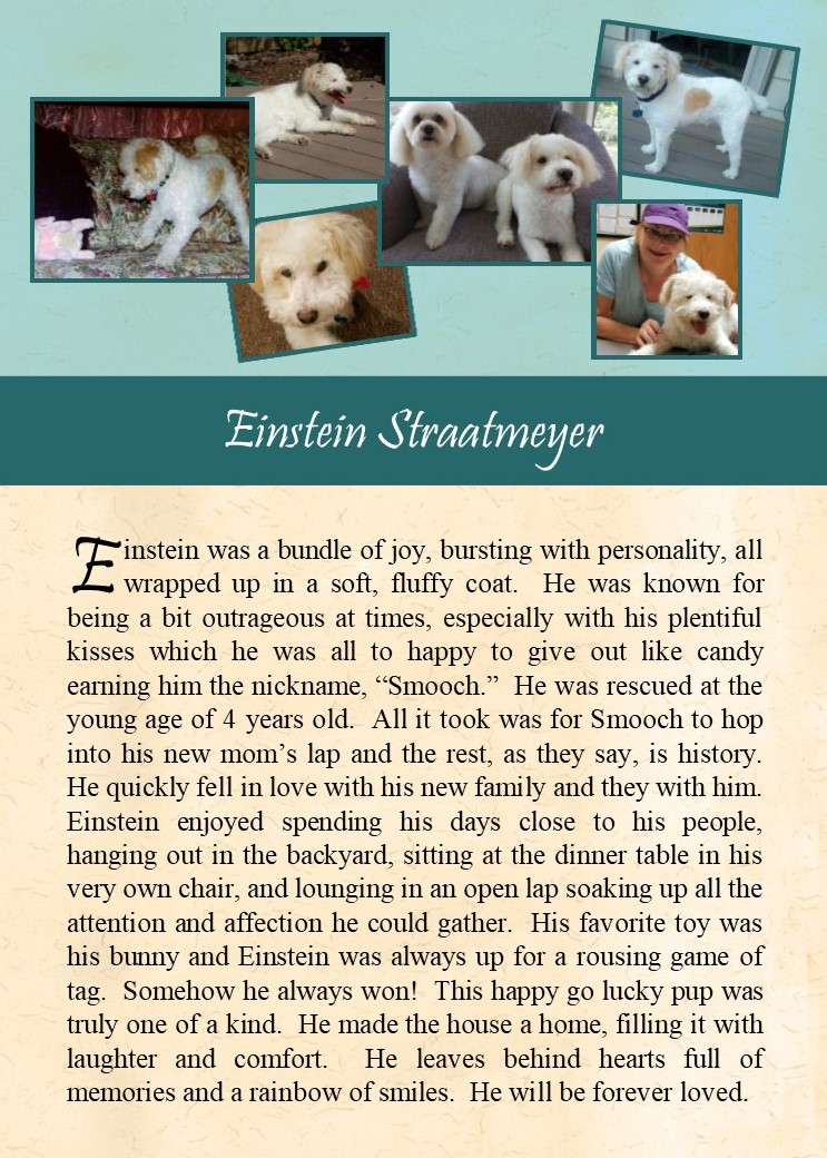 2017-09-28 Einstein Straatmeyer
