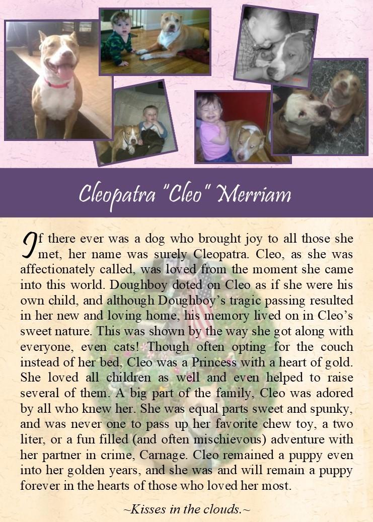 2017-10-02 Cleo Merriam.jpg