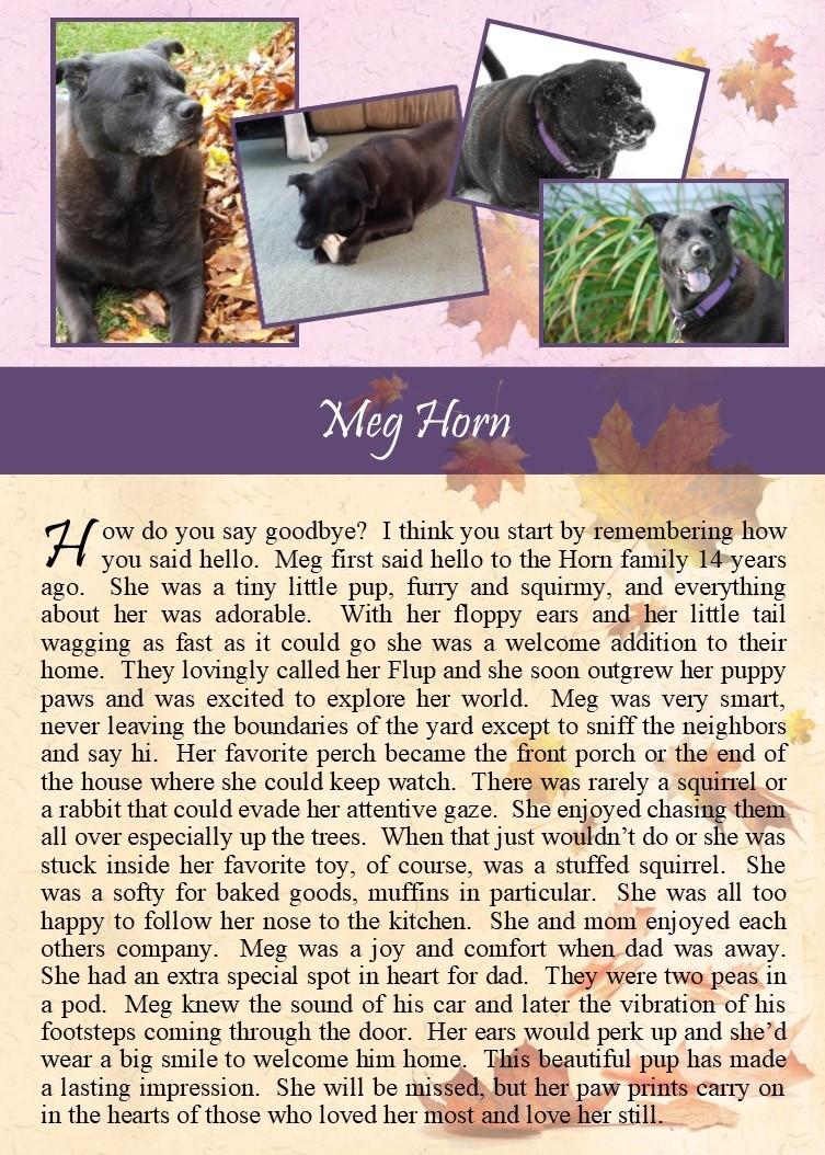 Meg Horn 2017-10-21.jpg