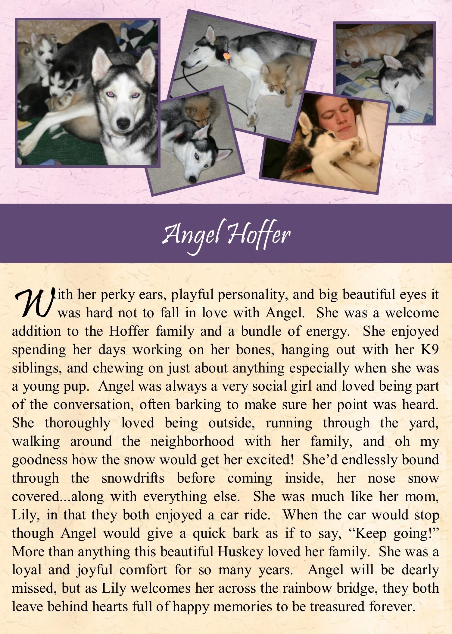 Angel Hoffer 2017-12-31.jpg