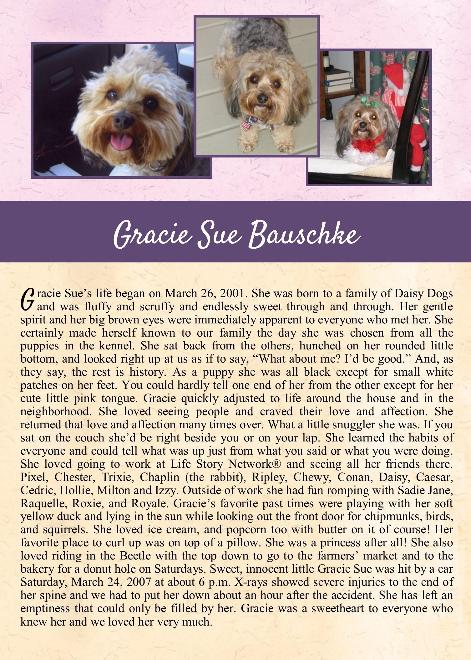 Gracie Sue Bauschke 2007-03-24.jpg