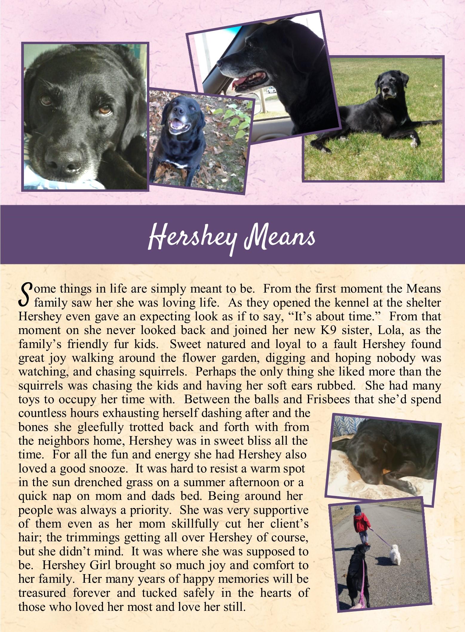 Hershey Means 2018-07-02.jpg
