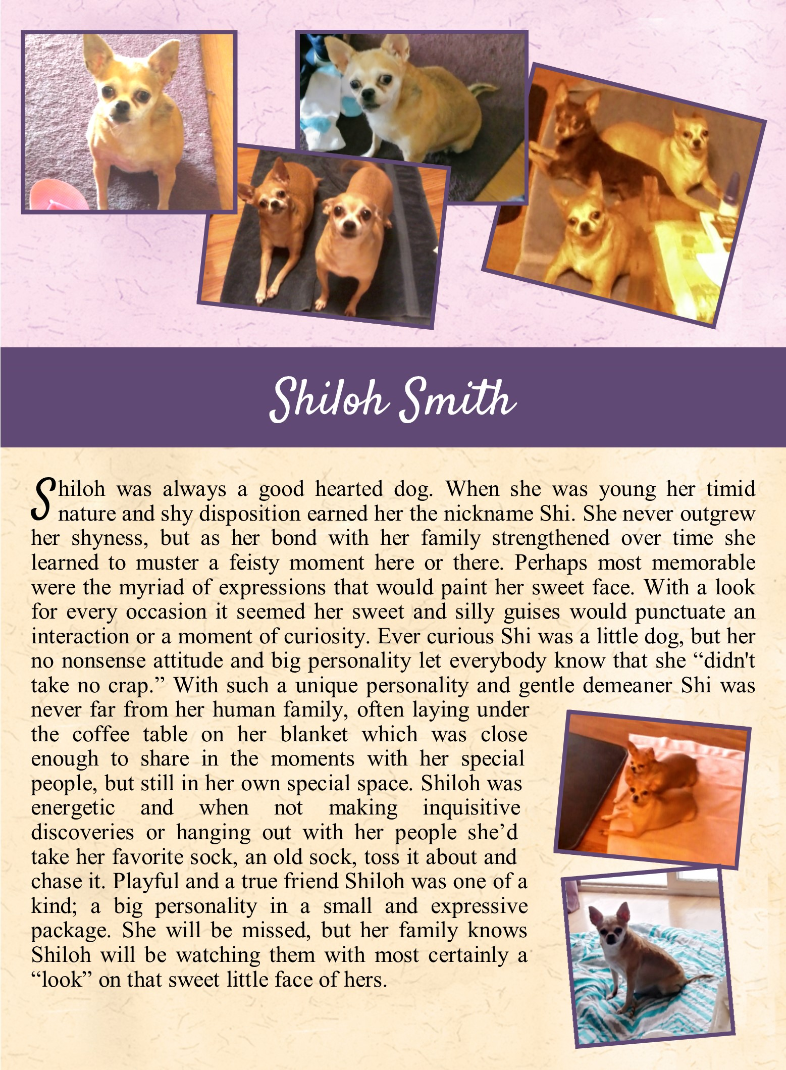Shiloh Smith