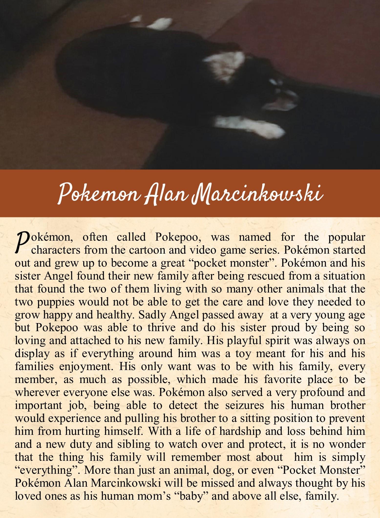 Pokemon's Life Tail