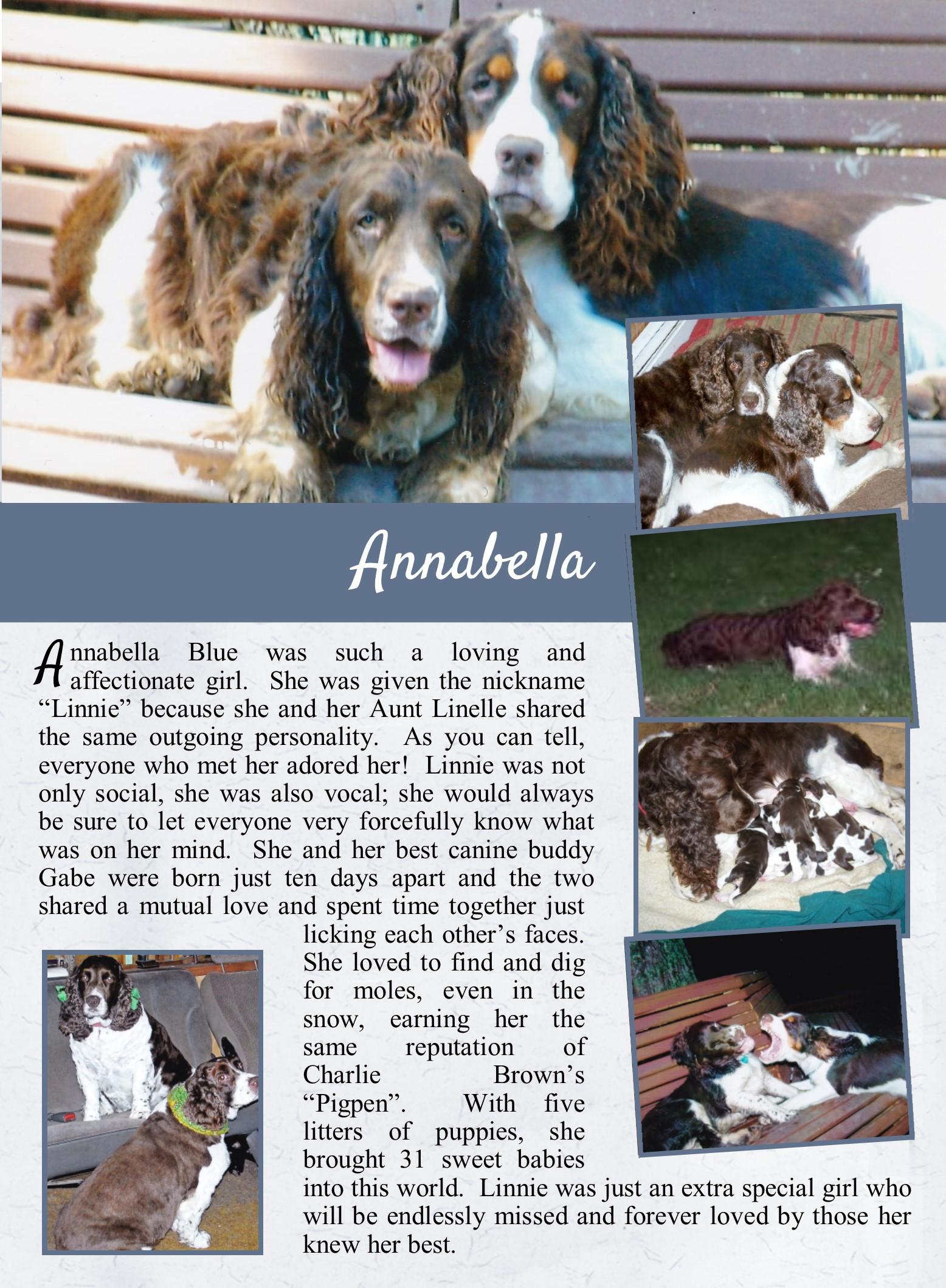 Annabella's Life Tail.jpg