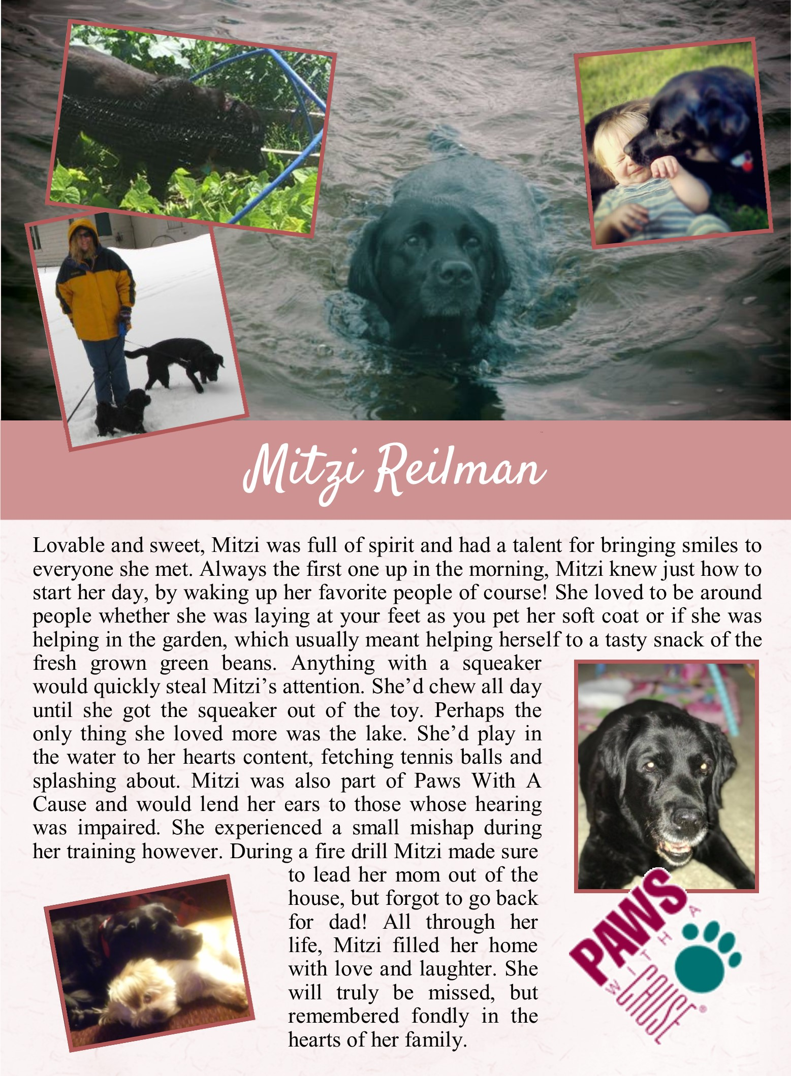 Mitzi's Life Tail