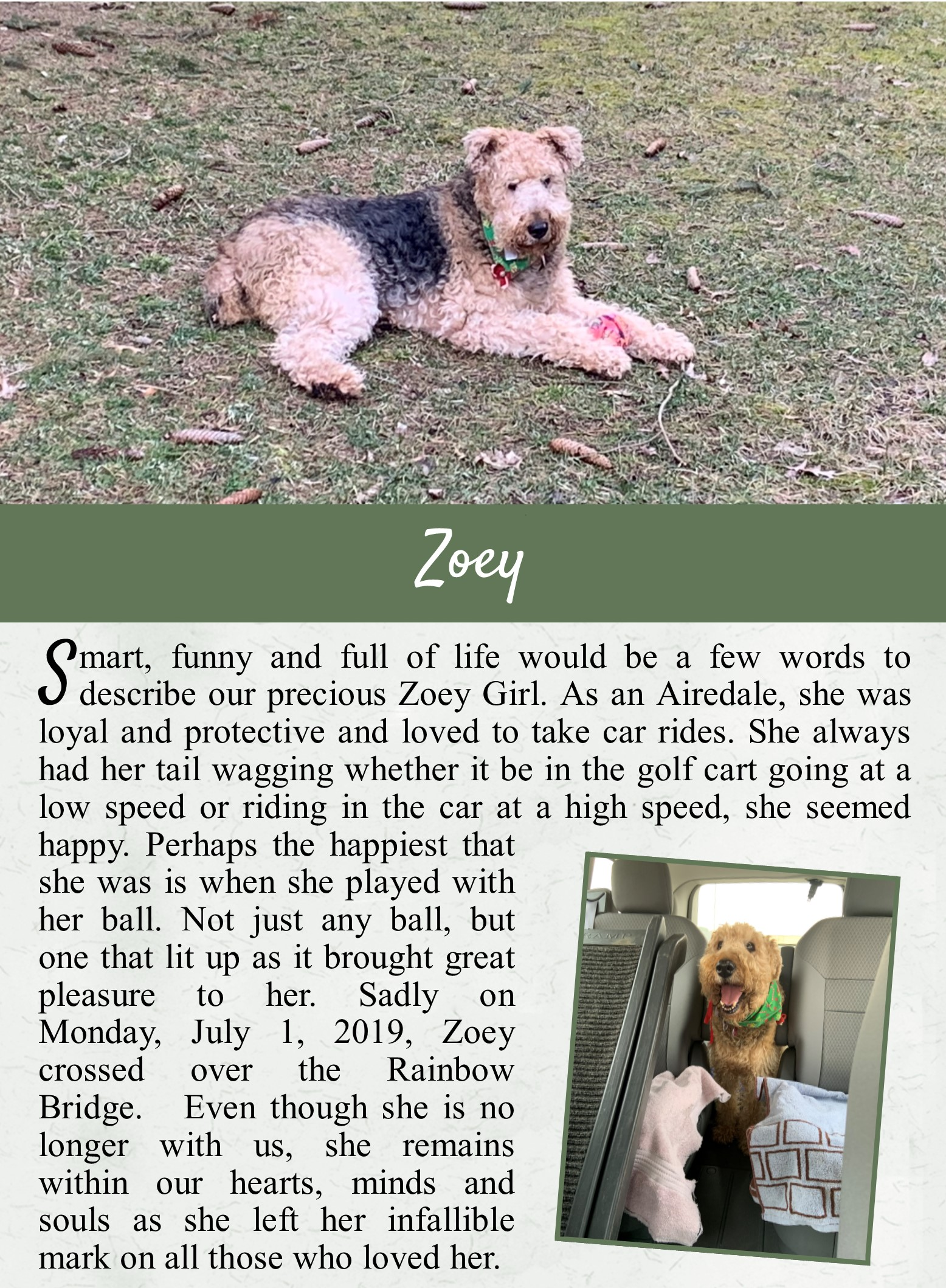 Zoey's Life Tail