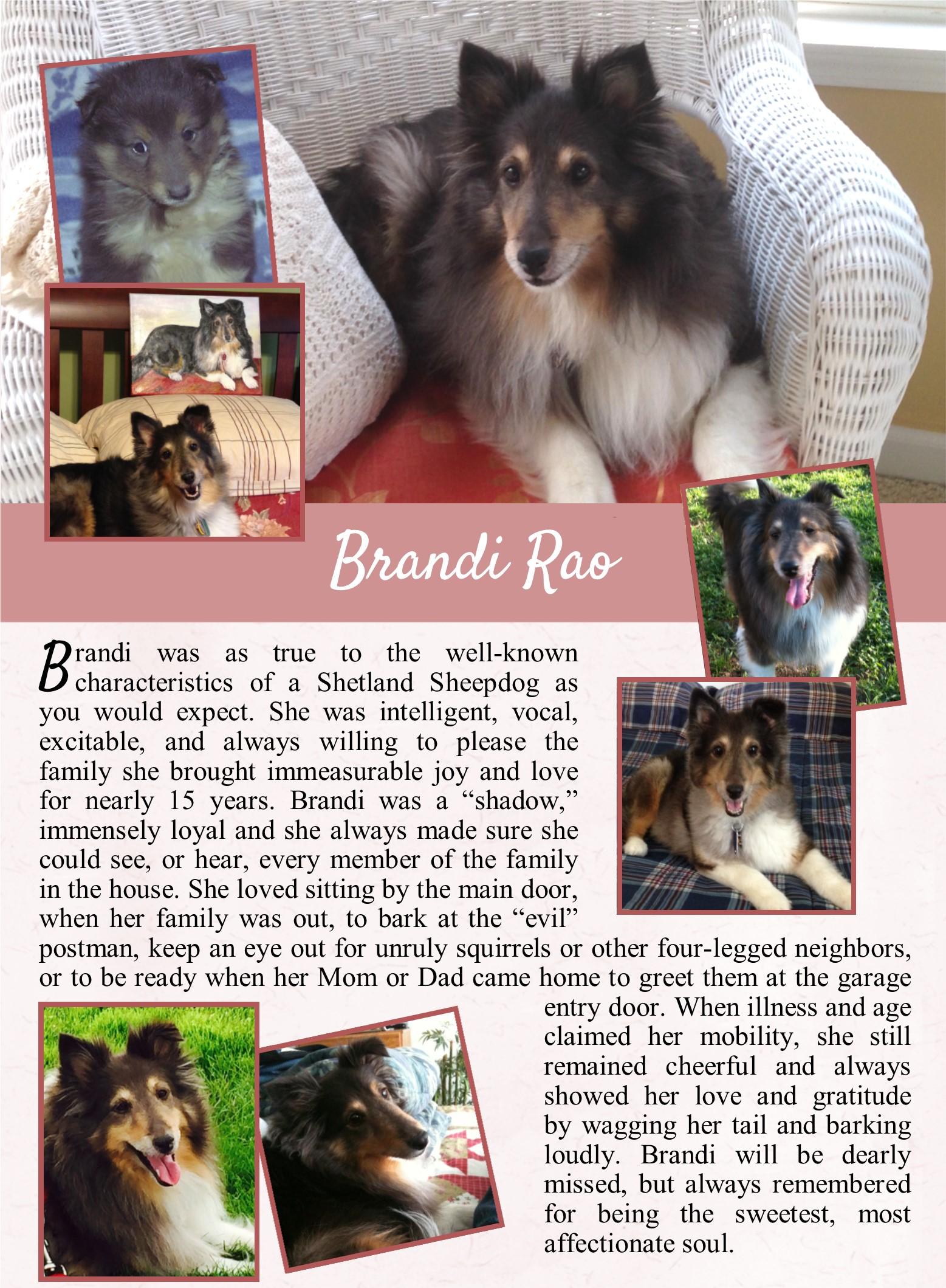 Brandi Rao 2019-07-05.jpg