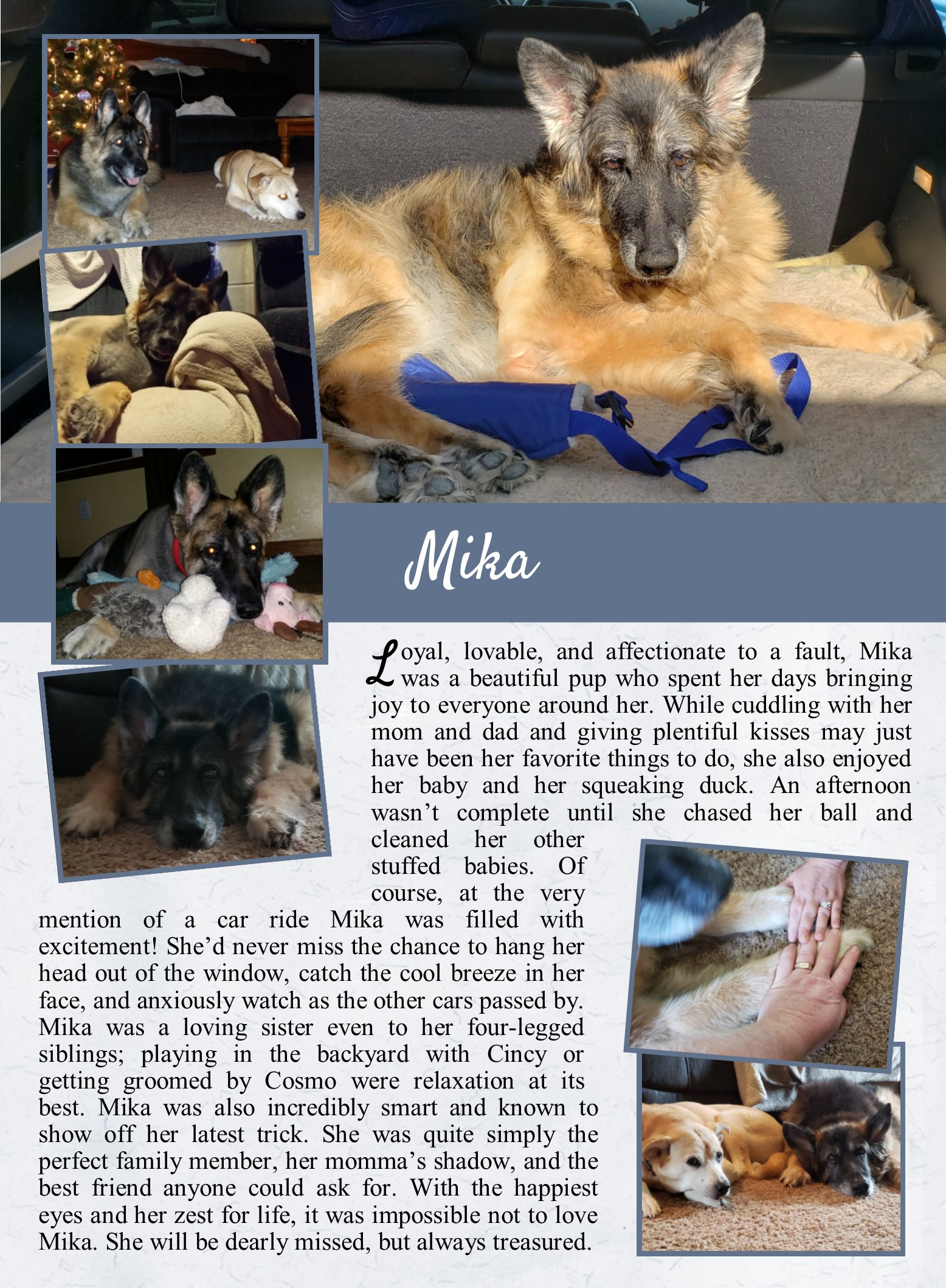 Mika's Life Tail
