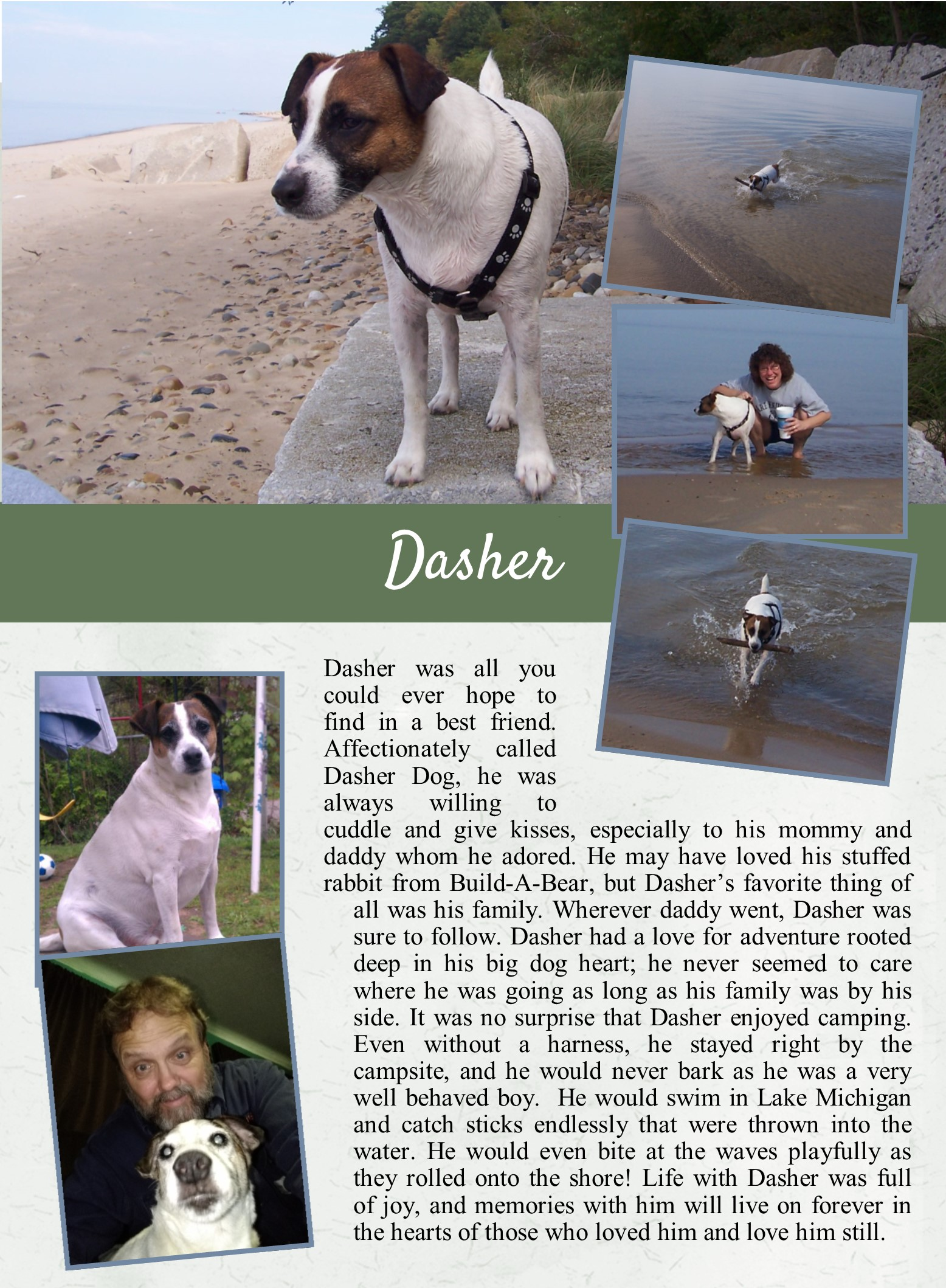 Dasher's Life Tail